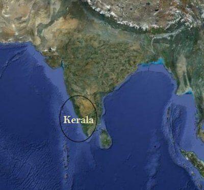 Kokosöl aus Indien
