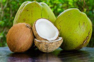 Was ist Kokosmilch ?