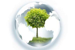 Kokosöl Biokraftstoff