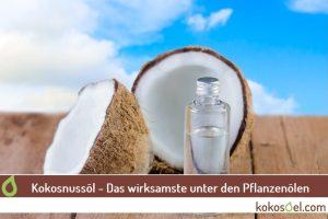 kokosnussöl - das wirksamste unter den Pflazenölen