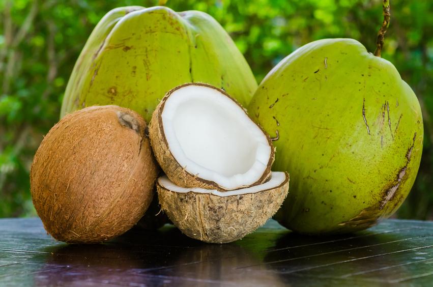 Kokosöl Haarpflege