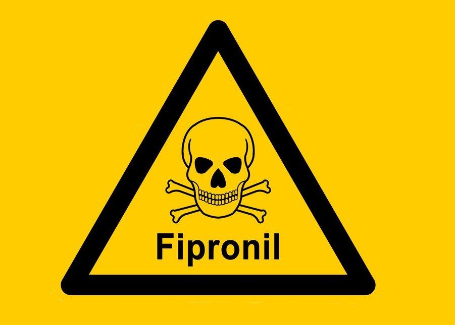 Fipronil Giftskandal