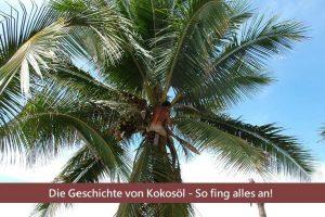 Geschichte von Kokosöl